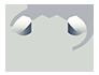 Trail Surveys Logo